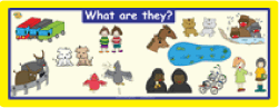 Plurals: 'What Are They?' Wall Poster